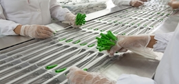 How Coventry Wipes Reduced Contamination in a Medical Device Manufacturing Process by 90%